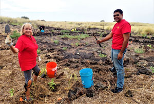 Kona Sunrise Rotary: Tree planting at Palamanui Community College